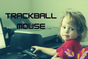 Ten Best Trackball Mouse Review